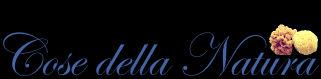 cosedellanatura-logo-1487772595.jpg
