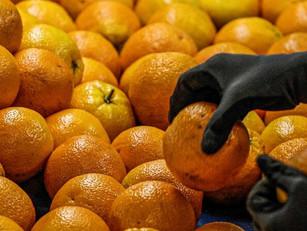 As Nações Unidas alertam que, em 2019, 17% de toda a comida disponível para consumo foi deitada fora