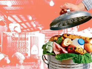 Um terço dos alimentos produzidos no mundo é desperdiçado