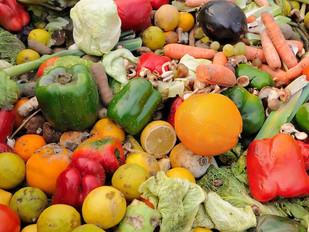 Parlamento aprova projeto de lei para inquérito nacional sobre desperdício alimentar