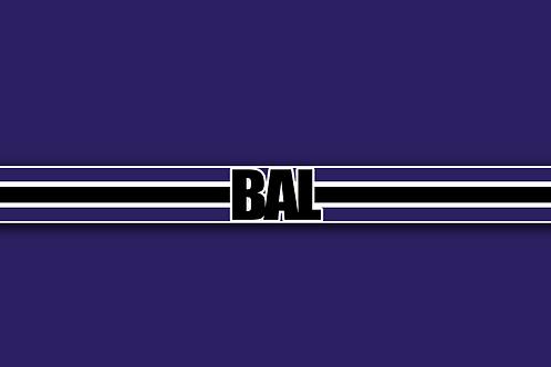 Baltimore Ravens Prospect Encyclopedia 2020 (Team PDF)