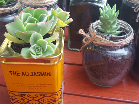 DIY Budget-Friendly Bombineres That Guests Will Want to Take Home.  Upcycled Succulents: A Non-Chees