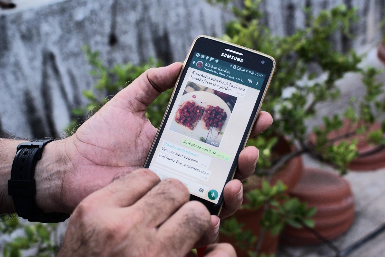 Urban farming whatsapp groups