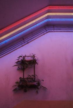 Full spectrum lights for indoors