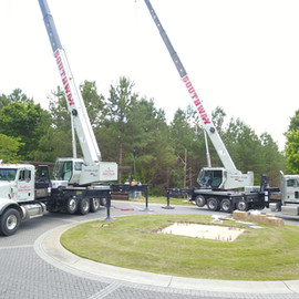 Cranes up.jpg
