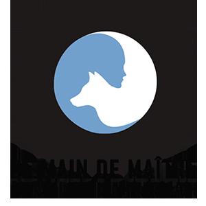 dmdm-logo
