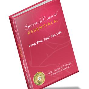 SFE Feng Shui.jpg
