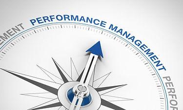 True Insights - Organizational Effectiveness coaching