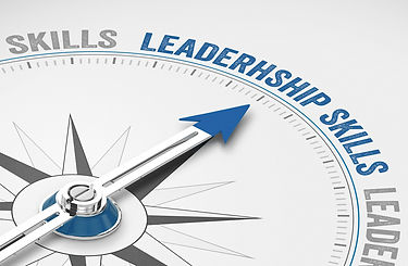 True Insights Consulting - Leadership Coaching
