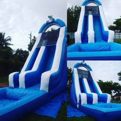 Dolphin Water slide 19x27 $220