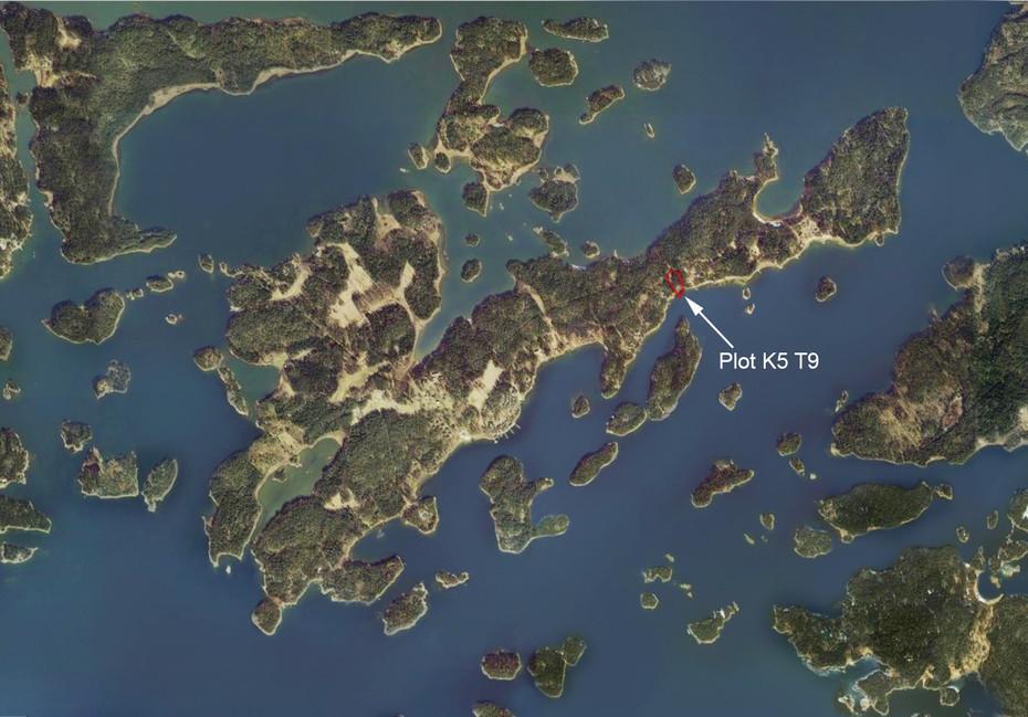 Plot K5 T9