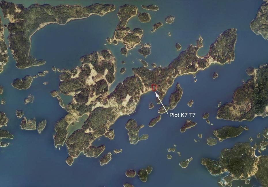 Plot K7 T7