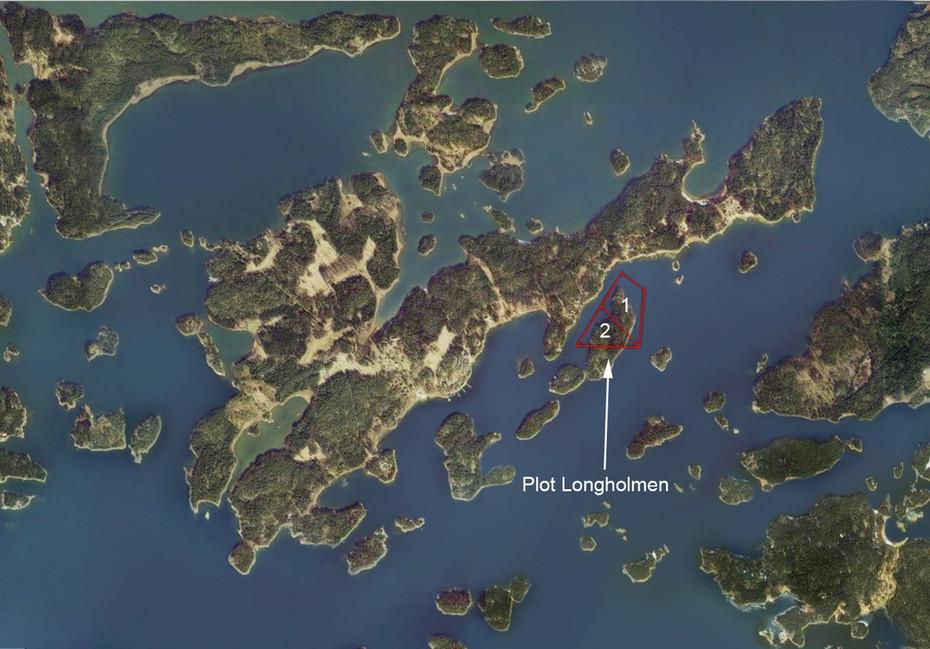 Plot Longholmen 1
