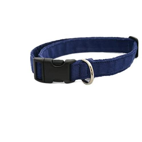 Blue Corduroy Collar