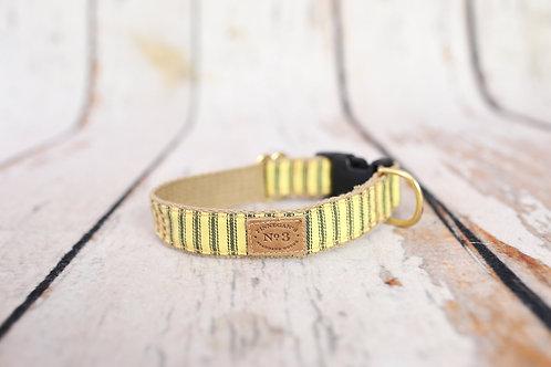 Sunshine Stripes Collar