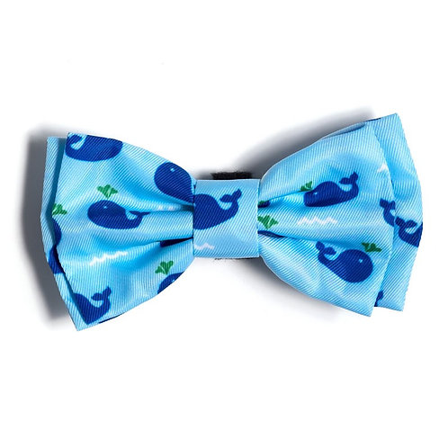 Squirt Bow Tie