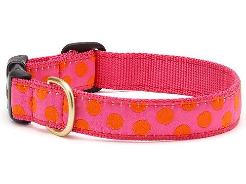 Pink/Orange Polka Collar