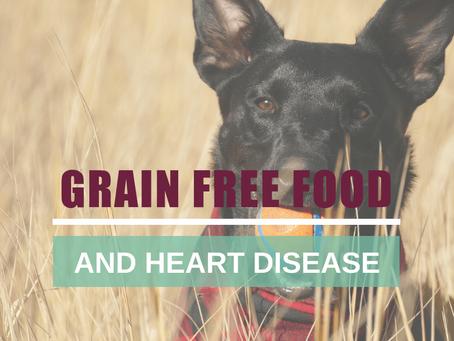 The Debate of the Grain Free Diet Simplified!