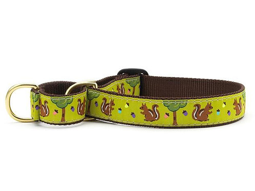 Nuts Martingale