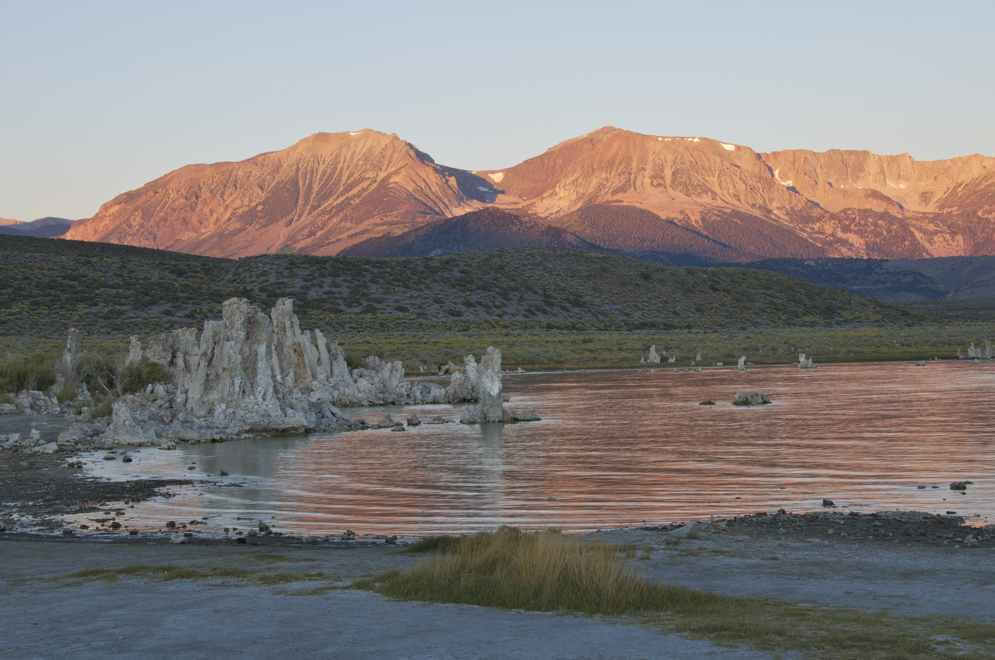 mono lake nature shot   2
