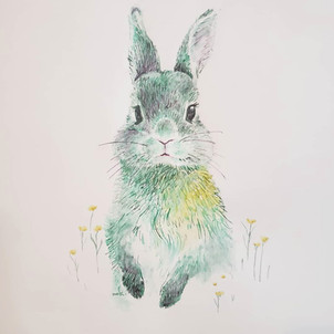 Sprouting rabbit