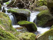Mini waterfalls, Rogla, Slovenia