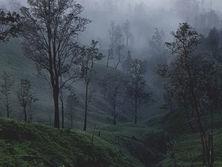 Mount Ijen, West Java, Indonesia