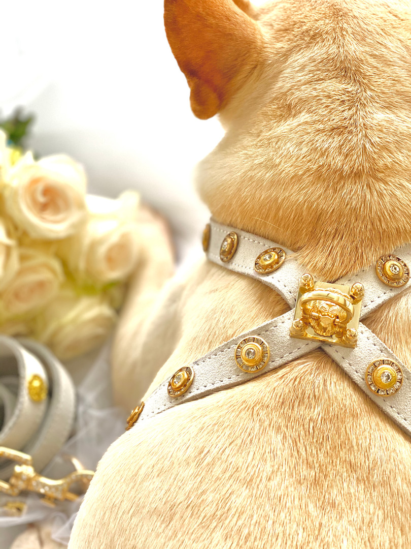 DOG HARNESS WEDDING COLLECTION