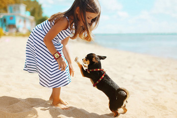 GIRL BRACELET AND DOG HARNESS MODEL BAROC RED
