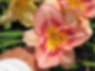 14-04B (07-16A_x_07-10)_IMG_7985.JPG
