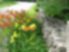 Former street view of Uncanoonuc Daylilies when located in Goffstown, NH.  We sell daylily seeds.