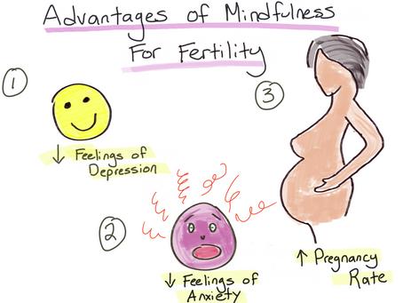 Mindfulness and Fertility