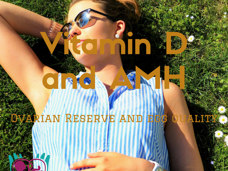Vitamin D and its Potential Role in Regulating Ovarian Reserve