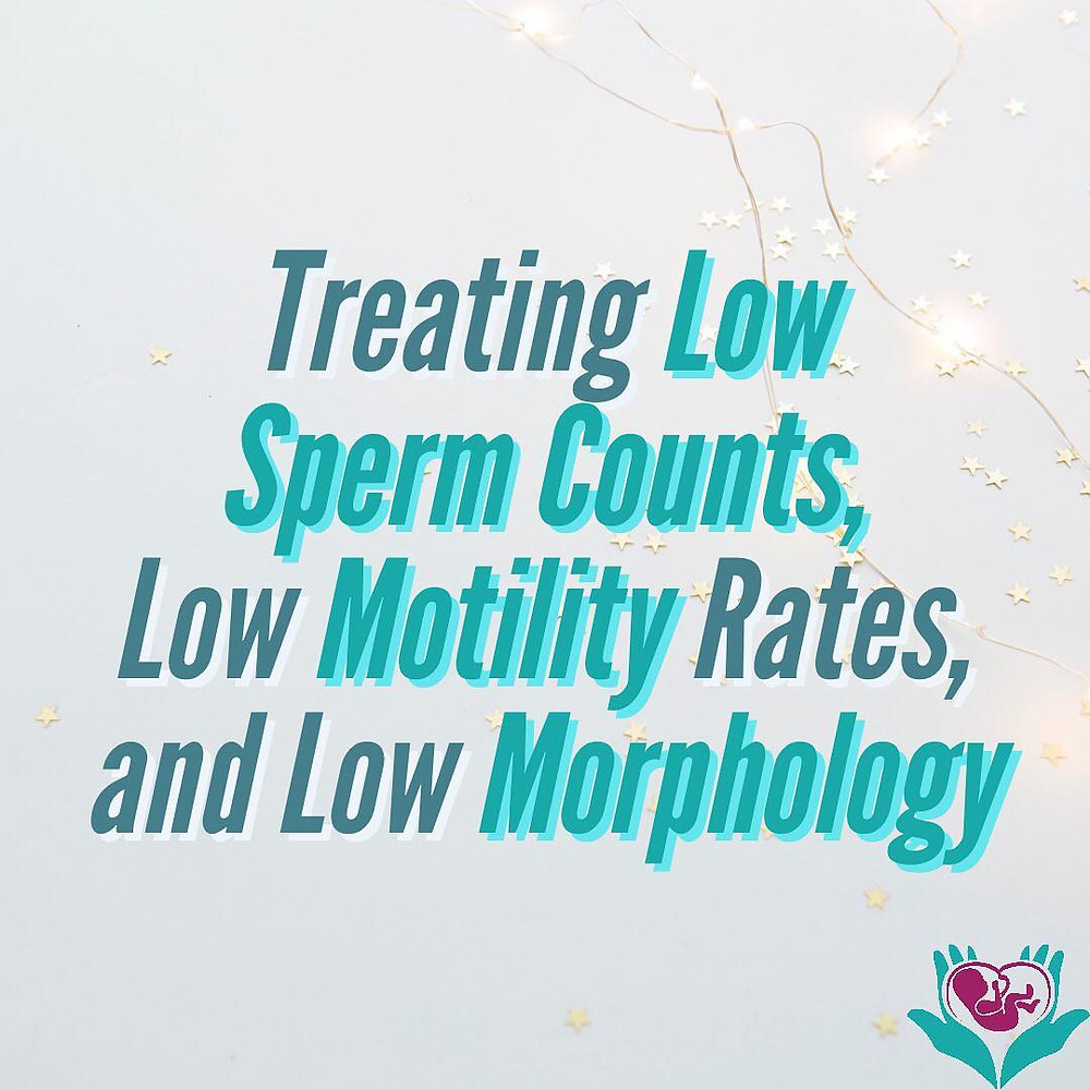 treating low sperm counts, low motility rates, and low morphology