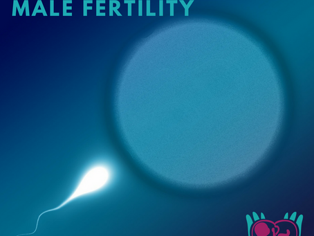 Vitamins for Male Infertility