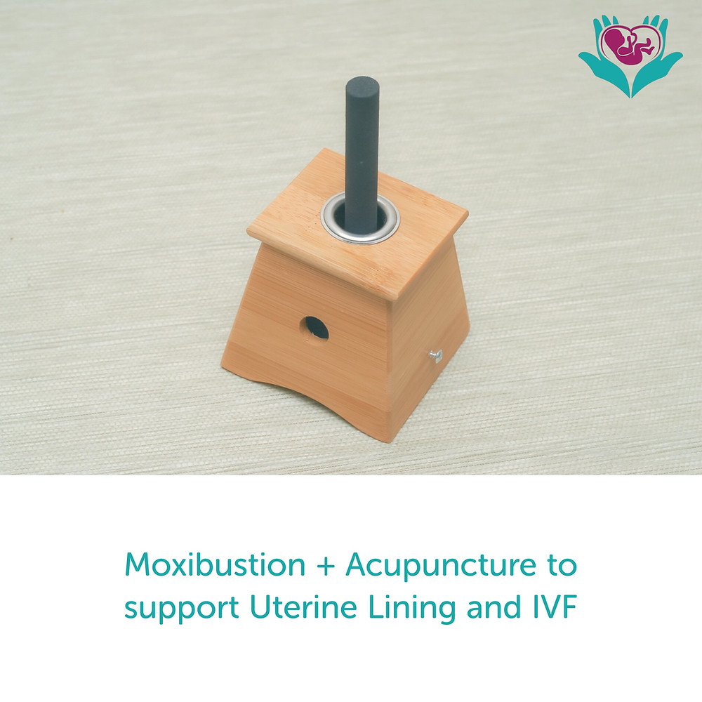 Moxibustion, acupuncture, fertility, IVF