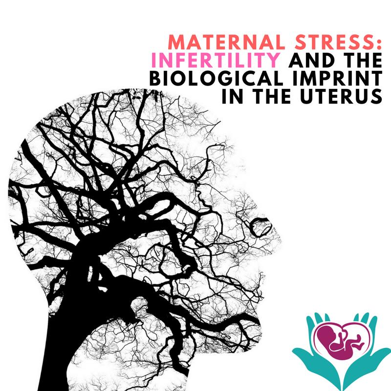 fertility, stress, infertility, pregnancy, naturopath