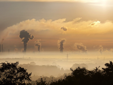 Scientific Review: How Air Pollution can Affect Fertility