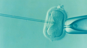 icsi, fertility, naturopath, ottawa