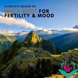 MACA ROOT, PERU, FERTILITY