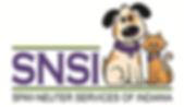 SNSI.png