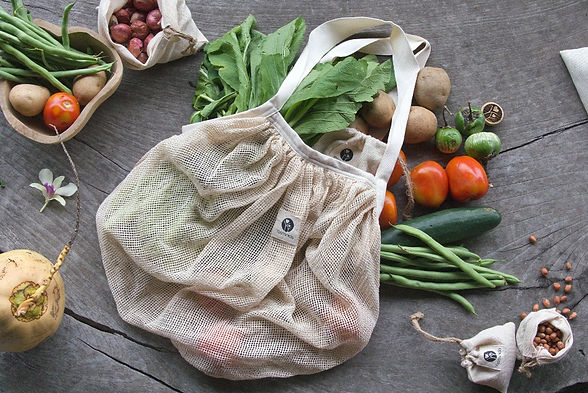 Eco Friendly Shopping Bag - Gaia