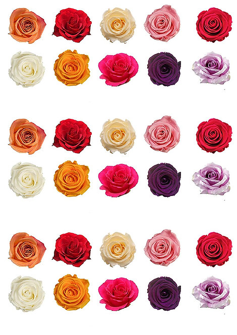 30 Mixed Colour Rose Flower Toppers Edible Thin Wafer Paper