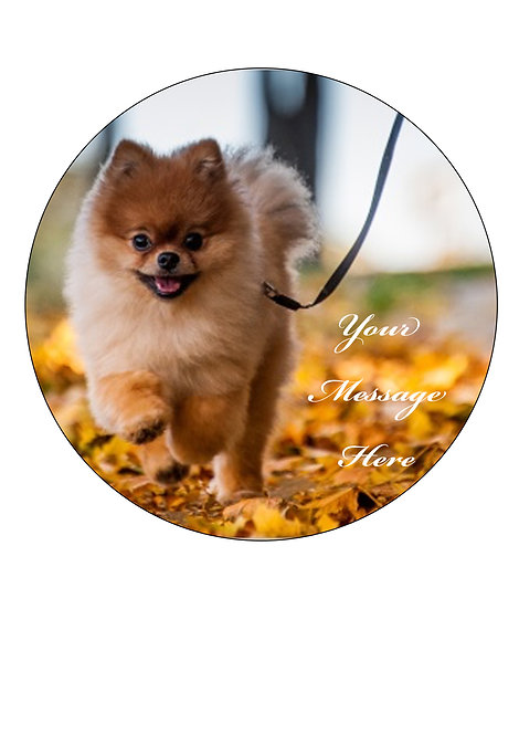 Cute Pomeranian Dog PERSONALISED MESSAGE 7.5 Inch Circle Decor Icing Cake Topper