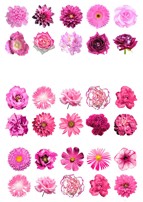 30 Mixed PINK Flowers Cake Toppers Edible Thin Wafer Paper