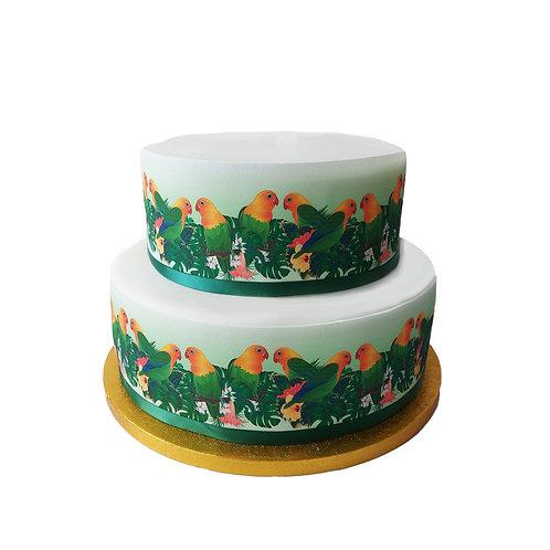 Tropical Love Birds Border Decor Icing Sheet Cake Decoration