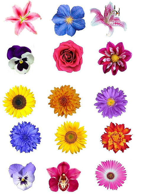 15 Mixed Summer Flowers Flower Toppers Edible Thin Wafer Paper