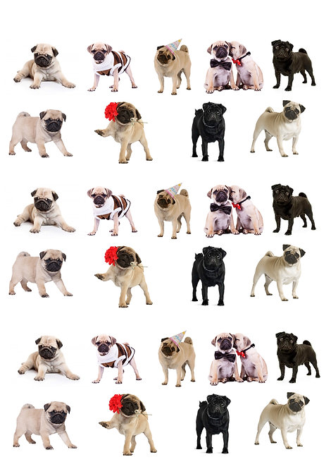 27 Stand Up Edible Wafer Paper Pug Dog Toppers