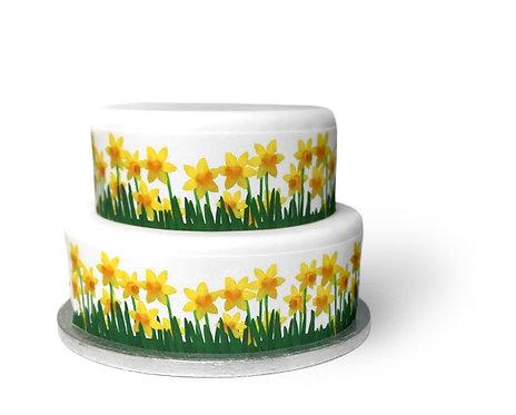 Spring Daffodil Ribbon Border Decor Icing Sheet Cake Decoration