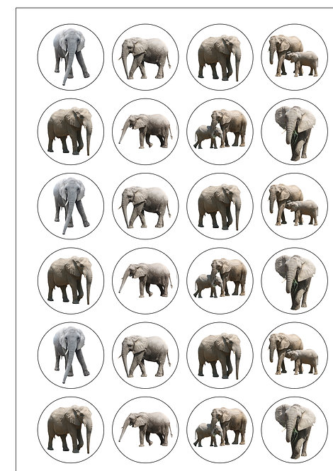 24 Precut Edible Wafer Paper Elephant themed Cake Toppers